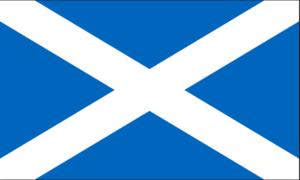 The Scottish Flag (Saltire)
